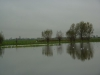 Trainingsloop door de Duifpolder op 11 november