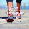 Powerwalk-trainer(s) gezocht!